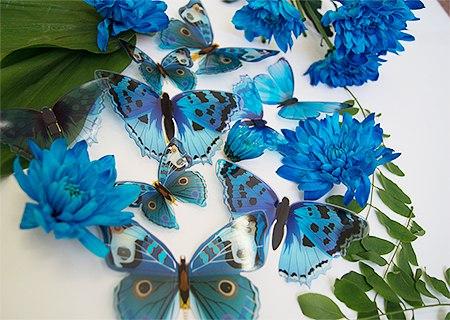 бабочки на стену синие фото