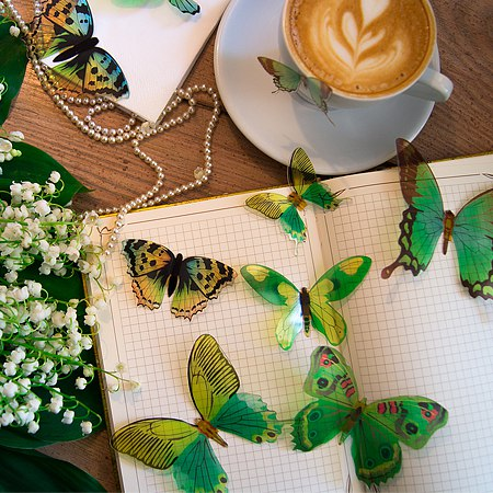 3д бабочки зеленые