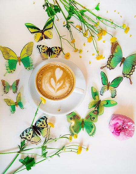 бабочки на стену 3д фото