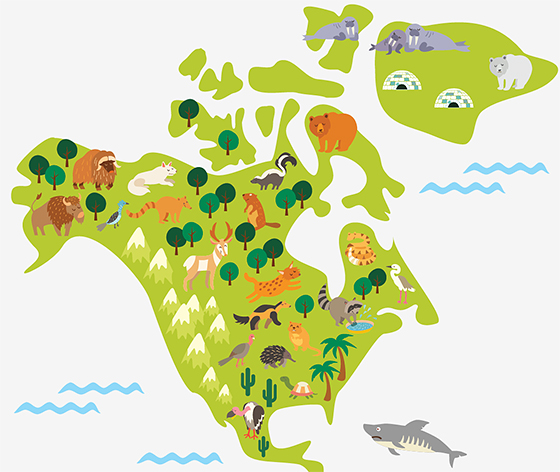 фото наклейка карта детская с животными DesignStickers
