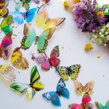 3д бабочки