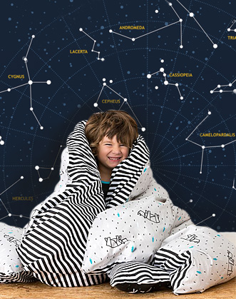 фото звездное небо фотообои, созвездия фотообои фото, синие фотообои в детскую, фотообои созвездия в детскую фото, designstickers фотообои фото