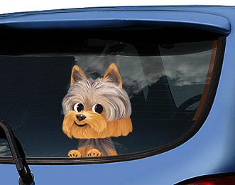 наклейки на авто, наклейка на машину,оригинальный недорогой подарок