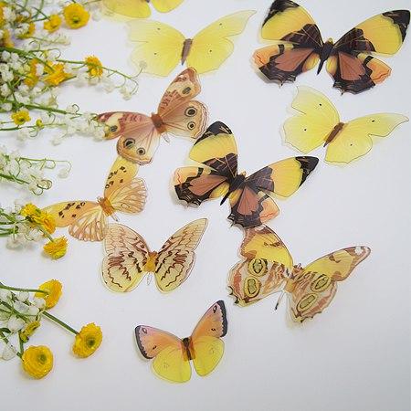 3Д бабочки фото