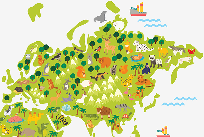 фото карта с животными в детскую купить